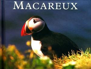 Macareux
