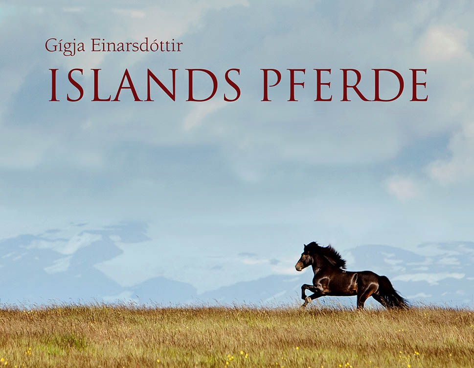 Islands pferde