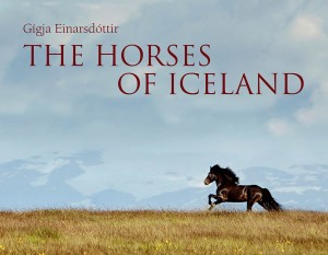 The Horses of Iceland