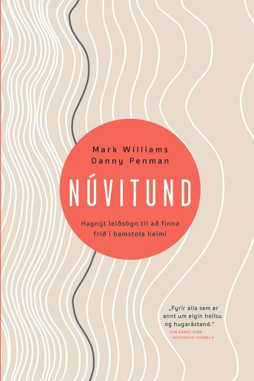 Núvitund - Hagnýt leiðsögn til að finna frið í hamstola heimi