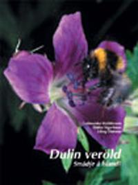 Dulin Veröld