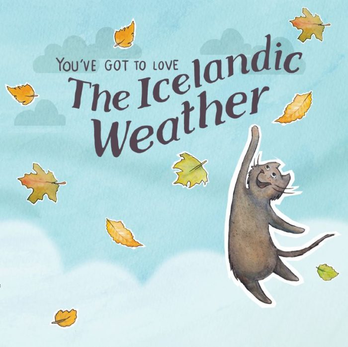 You've got to love the Icelandic weather