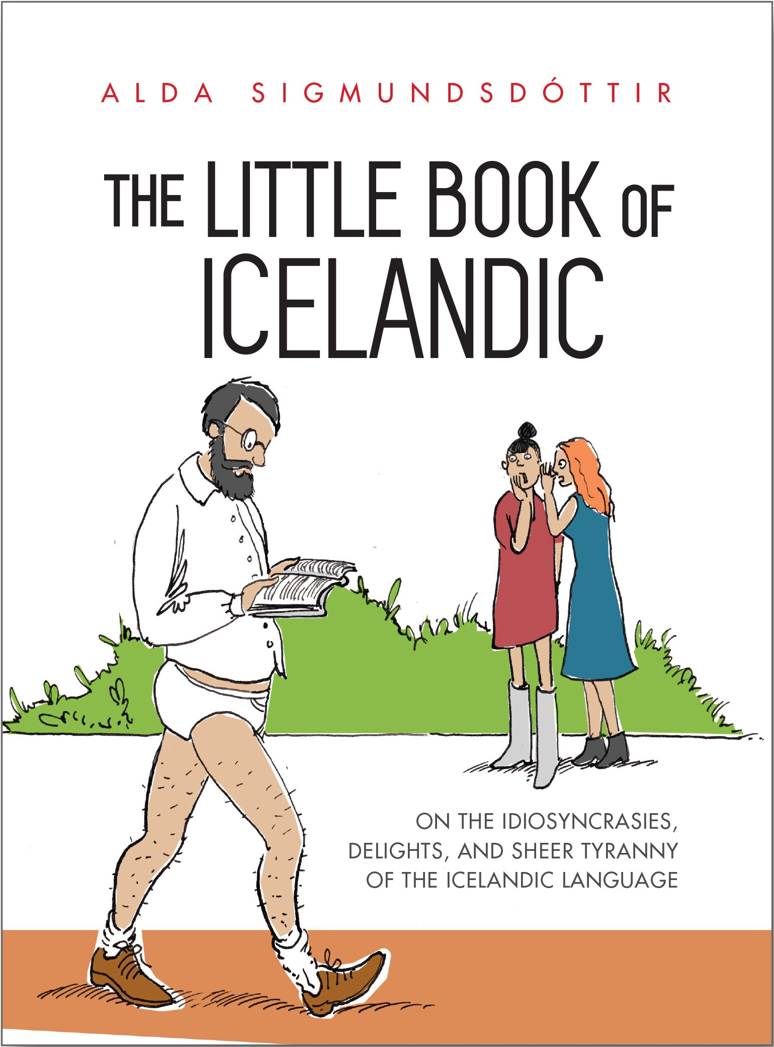The Little Book of Icelandic