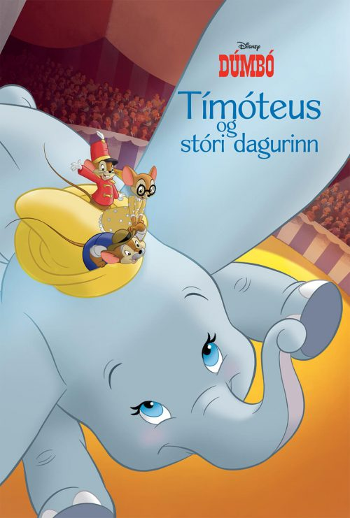 Tímóteus og stóri dagurinn